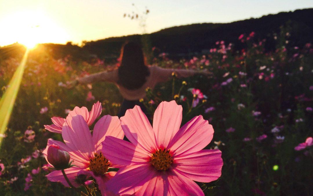 """Affirmation aus der GO4OM Selbstliebe Meditation """"Im inneren meines Gartens"""""""