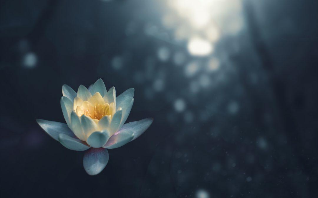 """Affirmationen aus der Meditation """"In der Tiefe deines Seins"""""""